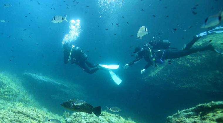 Plongeurs - Réserve Marine